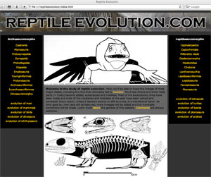 ReptileEvolution.com website